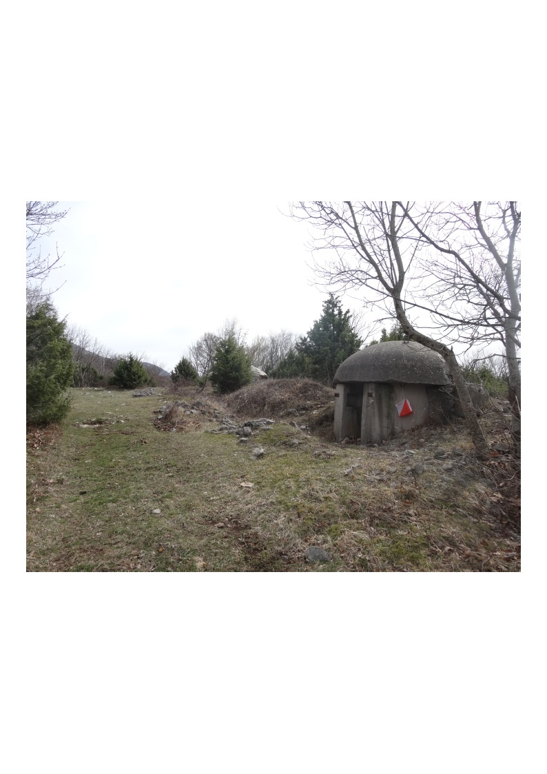 Orienteering control point near a bunker